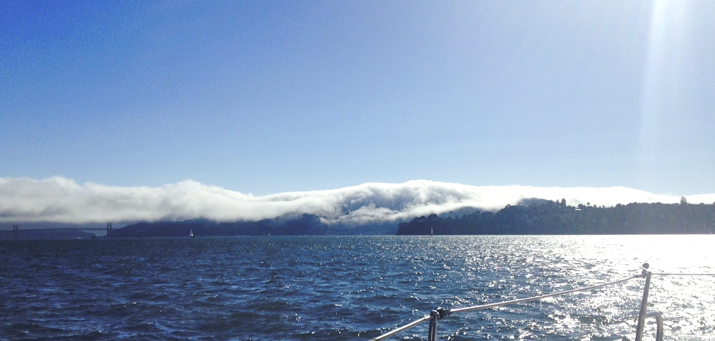 sailing san francisco -fog